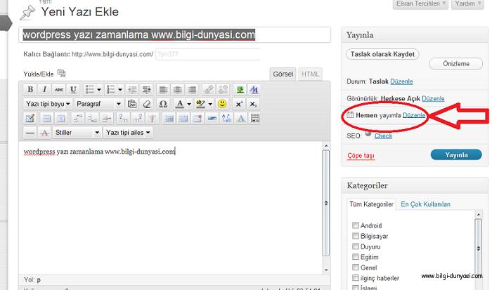 Wordpress te Yazdığımız Yazıyı Otomatik olarak İstedigimiz Zamanda Yayınlatma