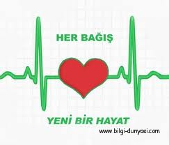 Organ Bağışı ve Detayları3